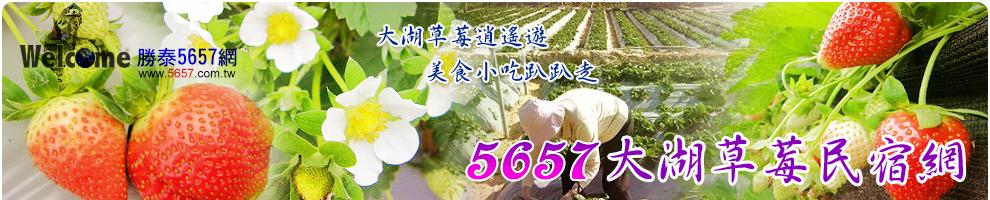 5657大湖草莓網