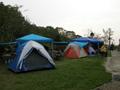 青雲螢火蟲露營區